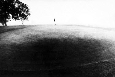 Dan Wilson Landscape Miscellaneous Places