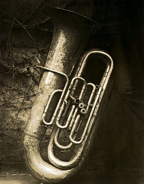 Andrew Davis TUBE LEANING ON WALL Musical Instruments