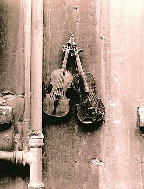 Andrew Davis VIOLINS HANGING ON WALL Miscellaneous Objects