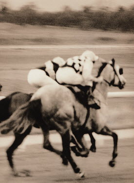 Michael Trevillion RACING JOCKEYS Animals