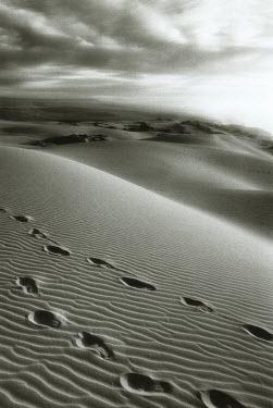 Michael Trevillion FOOTPRINTS IN SAND DESERT Desert