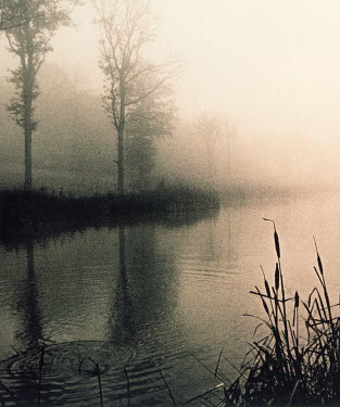 Graham Hughes FOGGY RIVERBANK Lakes/Rivers