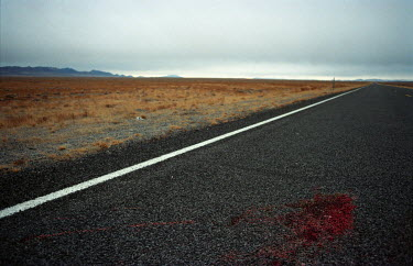 Colin Hutton ROAD WITH BLOOD STAIN Roads