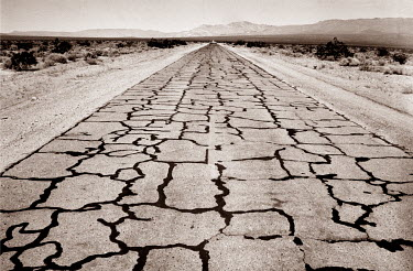 Colin Hutton CRACKED ROAD IN DESERT Roads