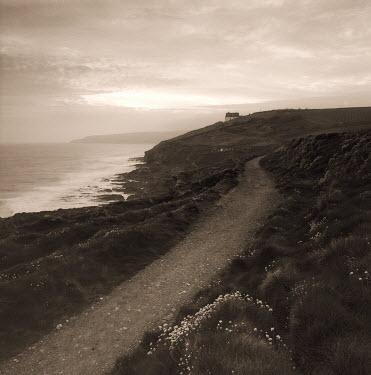 Clive Vincent Paths/Tracks