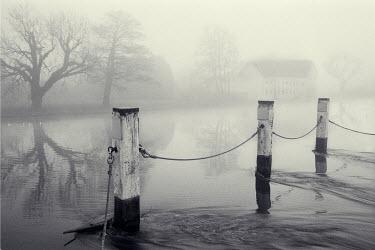 David & Jan Harris JETTY OUT TO FOGGY LAKE Lakes/Rivers
