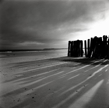 David Henderson LARGE SANDY BEACH WITH WOODEN POSTS Seascapes/Beaches