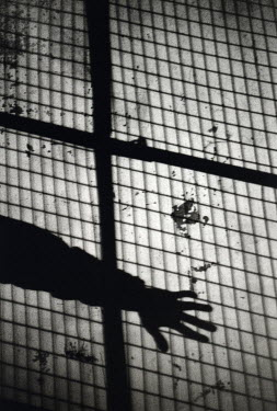 Denis Cohadon SHADOW OF HAND AND MESH FENCE Body Detail