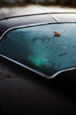 Andreas Overland CAR REAR WINDOW Cars