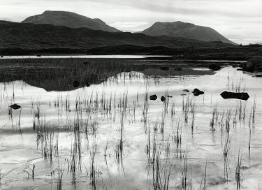 Chris Mowthorpe MOUNTAINS BEHIND LAKE Lakes/Rivers
