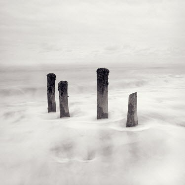 David McCormack OCEAN WAVES WITH WOODEN POSTS Seascapes/Beaches