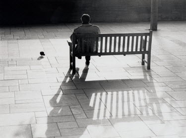 Rosemary Cooper MAN SITTING ON BENCH Men