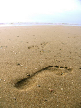 Yolande de Kort Seascapes/Beaches