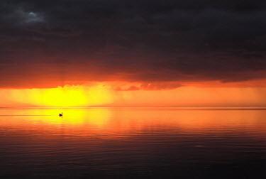 Guillaume Simioni SEA AT SUNSET Seascapes/Beaches