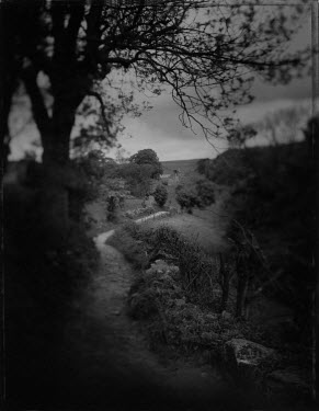 Andrew Sanderson RURAL PATHWAY THROUGH COUNTRYSIDE Paths/Tracks