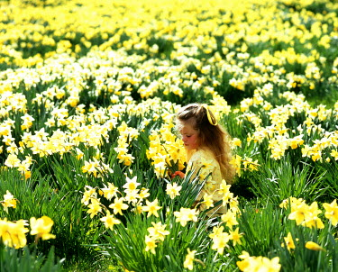 Maggie McCall YOUNG GIRL IN DAFFODIL FIELD Children