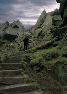 David Foster MAN CLIMBING MOUNTAIN PATH Men