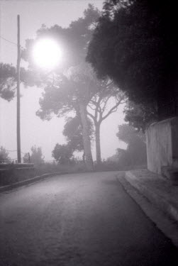 David Foster EMPTY ROAD SHROUDED IN FOG Streets/Alleys