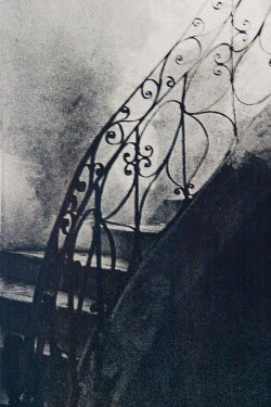 Zodie Hawkins OLD ORNATE STAIRCASE Stairs/Steps
