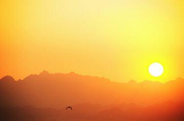 Claire Morgan MOUNTAIN RANGE WITH SUN Rocks/Mountains