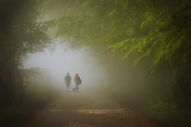Marcin Bublewicz COUPLE WALKING FOGGY FOREST PATH Couples
