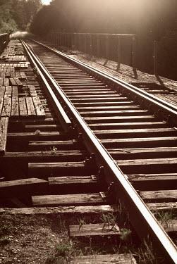 Douglas Black TRAIN TRACKS IN SUNLIGHT Railways/Trains