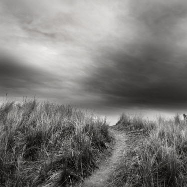 Jonathan Chritchley PATH OVER HILLTOP Paths/Tracks