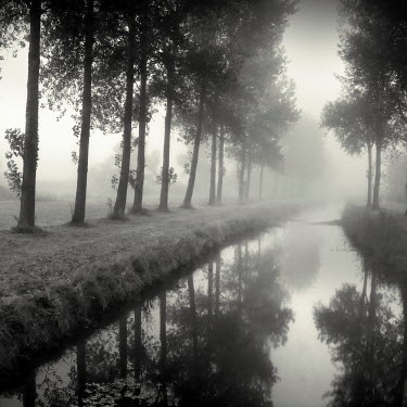 Jonathan Chritchley RIVER LINED BY TREES Lakes/Rivers