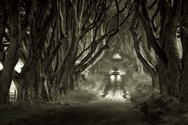 Mari Owen Roads