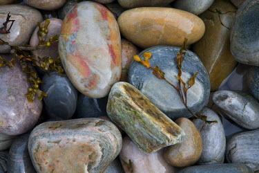 David Henderson STONES AND BEACH PEBBLES Miscellaneous Objects