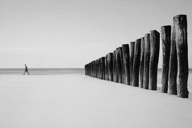 Chris Friel PERSON WALKING ON BEACH Seascapes/Beaches
