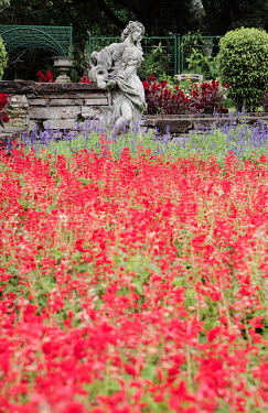 Neil Overy RED FLOWERS AND STONE STATUE Flowers/Plants