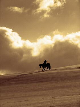 Ilona Wellmann MAN ON HORSEBACK IN DESERT Animals