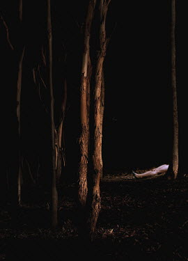 Samuel Burns DEAD BODY IN WOODS AT NIGHT Women