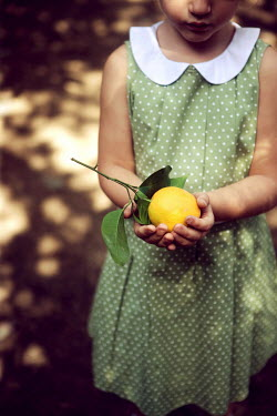 Martha Schuster LITTLE GIRL HOLDING LEMON Children
