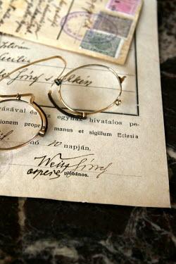 Ilona Wellmann GLASSES ON DOCUMENT Miscellaneous Objects