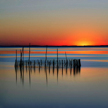 Christine Amat POSTS IN THE WATER WITH SUNSET Seascapes/Beaches