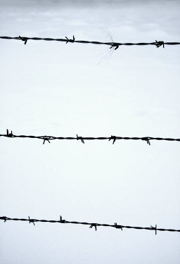 Ilona Wellmann BARBED WIRE Miscellaneous Objects
