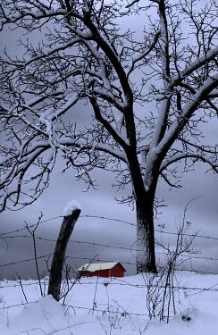 Ron Jones BARN IN SNOWY FIELD Houses
