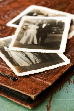 Susan Fox VINTAGE PHOTOS ON LEATHER ALBUM Miscellaneous Objects