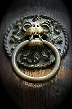 Ilona Wellmann LION HEAD DOOR KNOCK Building Detail