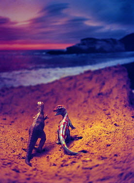 Sally Mundy DINOSAUR TOYS ON BEACH Animals