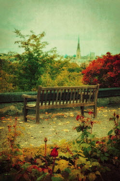 Irene Lamprakou PARK BENCH WITH CITY AND TREES Specific Cities/Towns