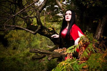 Paul Webster DARK HAIRED WOMAN RED DRESS TREE Women