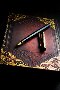 Valentino Sani INK PEN OLD LEATHER BOOK Miscellaneous Objects