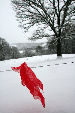 Ilona Wellmann RED SHAWL CAUGHT ON BARBED WIRE Miscellaneous Objects