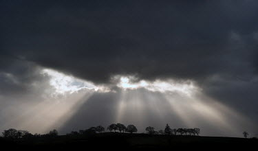 Edward Jones RAYS ON LIGHT FROM BEHIND CLOUDS Trees/Forest