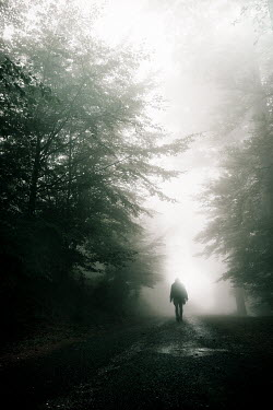 Christophe Dessaigne FIGURE WALKING IN FOREST Trees/Forest