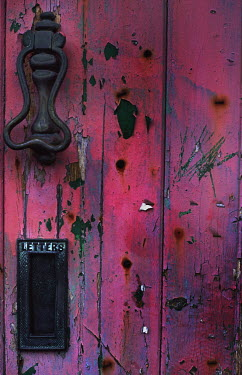 Harry Pettis door with letterbox and knocker Building Detail