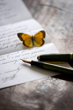 Lee Avison LETTER WITH BUTTERFLY AND FOUNTAIN PEN Miscellaneous Objects